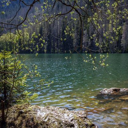 Čertovo jezero -Nachází se v Královském hvozdu na jihovýchodním svahu Jezerní hory ve vzdá